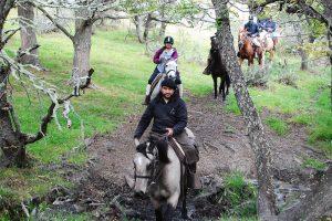Pingo Cabalgata-Medio-Dia-Cabalgatas-Patagonia-6 thumb